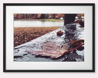 Autumn, Québec, Canada, America