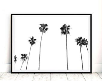 Black and White Palm Trees Print, Palm Trees Wall Art, Black and White Tropical Tree Print, Wall Art, Palm Tree Photo Tropical Decor