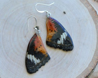1 Pair REAL Orange Butterfly Wing Earrings Preserved in Resin - Nature Earring Insect Charm