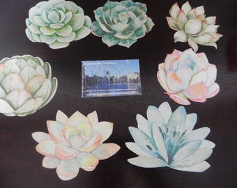 7 postcards with minimum flowers 9 cm x 7 cm