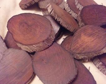 Ironwood slices- Sonoran desert ironwood-25 slices-beautiful wood grain!