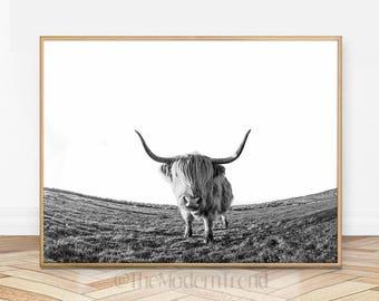 Cow Print, Cow Wall Art, Cow Decor, Cow Printable, Cow Photography, Black and White Cow, Cow Art, Farm Animal Print, Nursery Wall Art