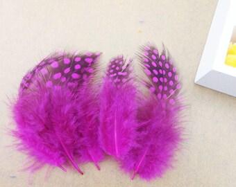 Set of 2 natural Fuchsia & black feathers