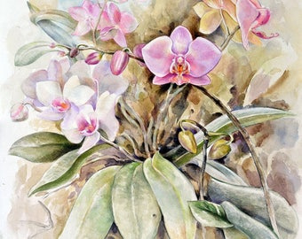 Orchids. Painting. Watercolor Painting. Flower Painting. Original Painting. Watercolor by Alina Osipenko
