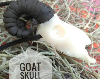 Clay Goat Skull Pendant /Dark Witchy Pagan Necklace