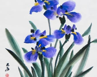 Dance of Irises