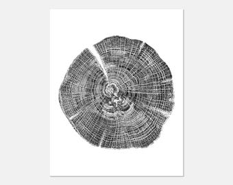 Prints Tree Rings, Prints of Tree Rings, Nature Prints, Nature Decor, Rustic Prints, Black and White Prints, Prints, Tree Rings, 164