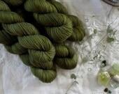 Lichen - Hand Dyed Yarn - Sock Yarn - Fingering Yarn - Superwash Merino / Nylon - 100 gms