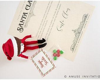 Elf Magic Seeds, Santas Magic Seeds, Christmas Elf Accessories, Santa's Elf Prop, Elf Printable, Christmas Elf Ideas, Easy Elf Ideas