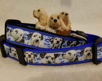 Dalmatian Handmade Dog Collar 1 Inch Wide Large & Medium