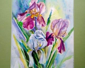 Original watercolor painting, Iris flowers, floral wall art, blooms, wall decor, botanical, nature artwork, birthday, housewarming gift idea