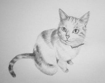 Small custom pet portrait - Pencil - detailed - realistic - gift idea