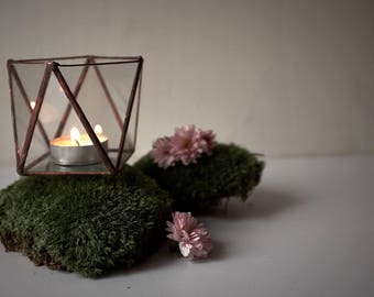 glass terrarium_cande holder