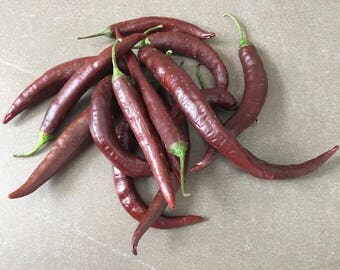 Cayenne Brown/brown 10 seeds/seeds/NEW/NEW/
