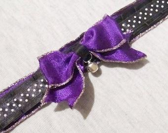 Purple gold kitten play collar