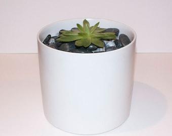 """Orchid Pot 6"""" White"""