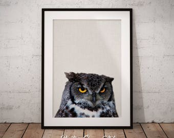Owl Print Art, Printable Owl, Woodland Animal, Nursery Animal Printable, Forest Animal, Nursery Forest Decor, Woodland Nursery Decor, Owl