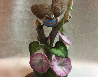 National Audubon Bluethroat with Morning Glories (#018)