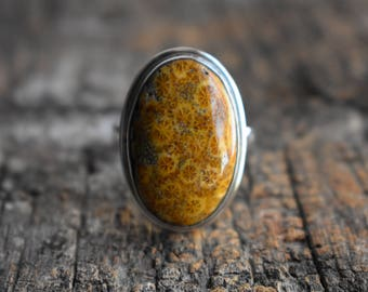 fossil coral ring,oval shape ring,fossil ring,fossil gemstone ring,natural fossil ring,925 silver ring,gemstone ring