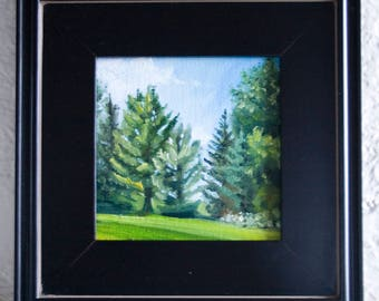 Summer Pines - 6x6in - Oil Painting By Nicole Blackburn