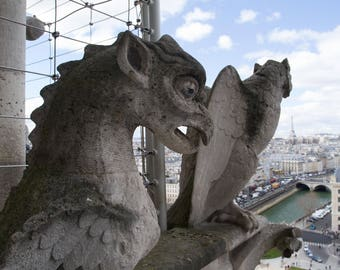 Photo of Gargoyles on Notre Dame Cathedral, City of Paris in the Background