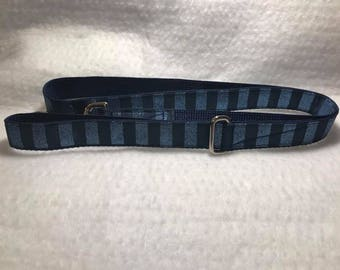 Blue with Sparkles 4 Foot Leash