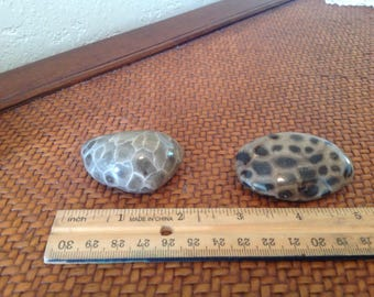 """What A Pair!  Stunning Hand Polished Lake Michigan Petoskey Stone and a Lake Huron """"Cousin"""" Coral Fossil"""