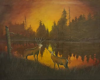 White Deers at Sunset