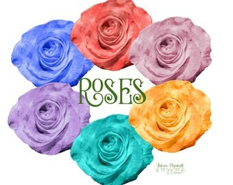 Roses collection,  Watercolor Clipart, Birthday, Baby, Child, Wedding, Fun, Craft,