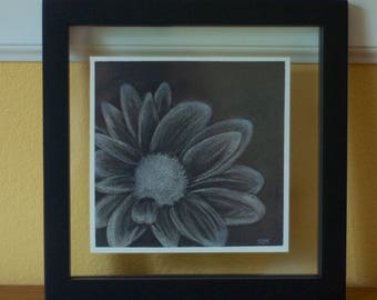 Daisy Charcoal Drawing
