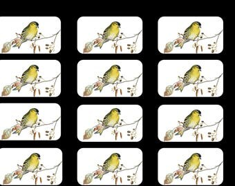 Yellow Bird Gift Tags Digital Set of 12 - Instantly Downloadable