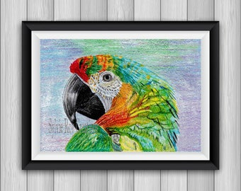 digital download, print, Parrot, wall decor, design color, instant, living room, office, download, image, pencils
