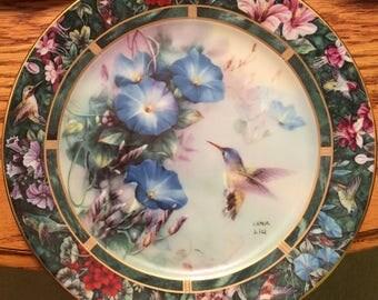 Lena Lui, Violet-Crowned Hummingbird Plate