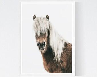 Horse Photo, Horse Printable, Horse Art, Horse Wall Art, Horse Print, Horse Poster, Scandinavian Poster, Scandinavian Print, Digital Print