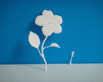 Cut hibiscus to create white drawing paper
