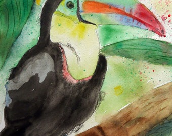 Parrot toucan on a branch