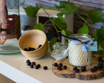 Soy wax and wood Wick candle candy fruit black