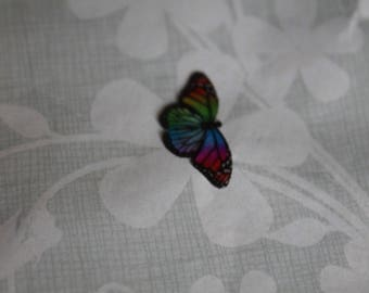 transparent Butterfly multicolored 2.1 x 1 cm, n61