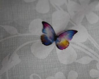 transparent Butterfly multicolored 2.1 x 1.4 cm, 65