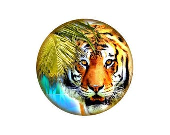 2 cabochons Tiger glass 20 mm - 20 mm