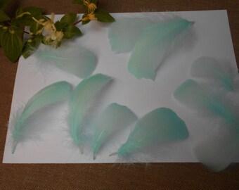10 feathers - blue d ' about 8cm