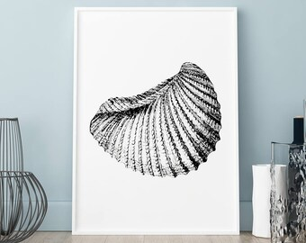 Shell graphic arts poster, Shell print, Wall art, Art Print, Scandinavian print, Scandinavian poster