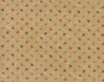 Kansas Trouble - Gooseberry Lane - Twigs and Triangles - Multi - 9544-11