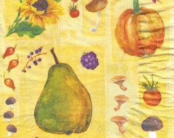 029 autumn FRUITS vegetables 1 napkin 33 X 33 X 4 design