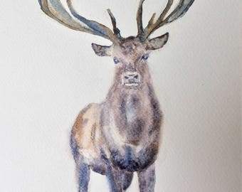 Card - Stag, Greetings Card