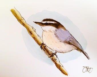Original Nuthatch Bird Animals Watercolour Painting