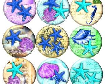 Set of 15 cabochons 18mm glass, holiday, shells, starfish, seahorse ref ZC240