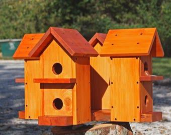 Four house Martin Box