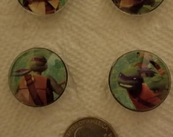 Teenage Mutant Ninga Turtle Magnets