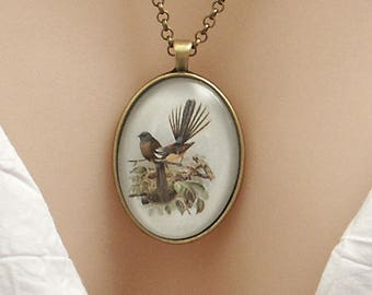 New Zealand Fantail birds, vintage art print, large oval Picture Pendant, 40x30mm, glass dome pendant, cameo